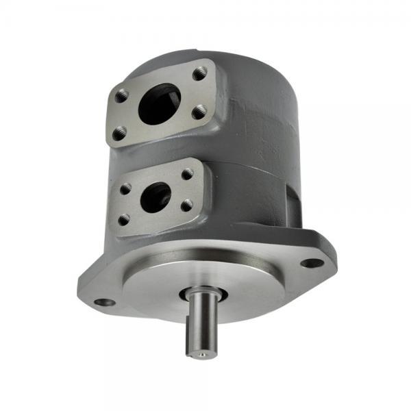 Vickers PVB20-FRS-20-C11 PVB Series Axial Piston Pumps #1 image