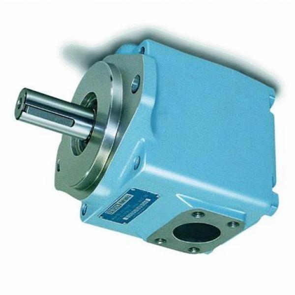 Denison PV15-1L1D-C02 Variable Displacement Piston Pump #1 image